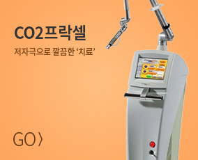 CO2 프락셀 바로가기